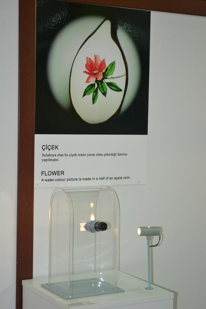 """Sadece Mikroskopla Görülebilen """"Mikro Minyatür Eserler Sergisi"""" galerisi resim 10"""