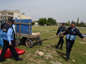 Tarsus'ta Zabıta'dan operasyon