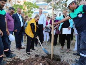 Mezitli'ye engelli parkı yapılacak