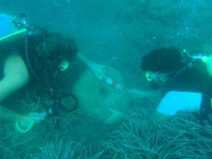 Anamur, Bozyazı, Aydıncık, Gülnar ve Silifke kıyılarında sualtı arkeolojik çalışmaları bu yaz yapılacak