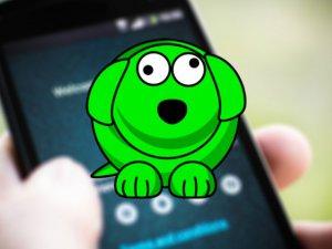 WhatsDog nedir, nasıl çalışır?