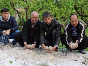 Mersin'de çiftçiyi dolu vurdu!