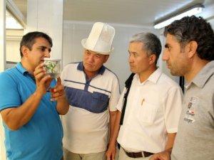 Kırgız bilim adamları Alata'da