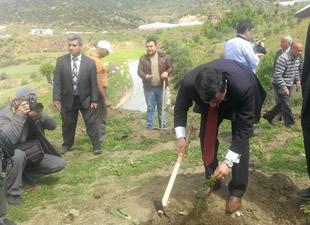 Şehit Savcı Mehmet Selim Kiraz Hatıra Ormanı oluşturuldu