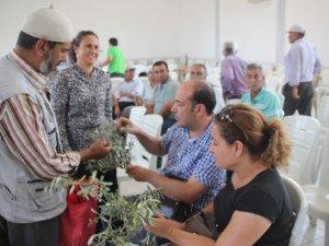 Gülnar'da zeytin üreticileri bilgilendirildi