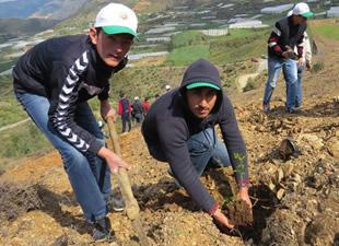 Öğretmen ve öğrenciler ağaç dikti
