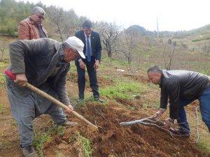 """Mersin Ziraat Odası Başkanı Cengiz Gökçel, """"Çiftçinin yanındayız"""""""