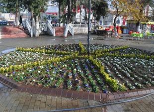 Silifke Belediyesi, 100 bin adet mevsimlik çiçeği toprakla buluşturdu