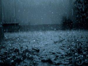 Yağmur Kazı Çalışmasına Başladı!