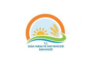 Bozyazı İlçe Gıda Tarım ve Hayvancılık Müdürlüğü'nden duyuru