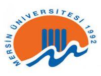 Mersin Üniversitesi, sıçrayışta! 21 sıra birden yükseldi!
