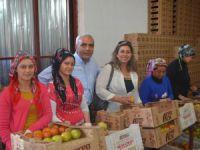 CHP'li Baysan: Köylünün yanındayız