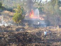 Anamur'daki yangın paniğe neden oldu