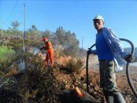 Anamur'un Ovabaşı Mahallesi'nde yangın: 50 zeytin ağacı, 120 badem fidesi yandı