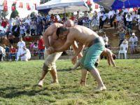 Pehlivanlar, Çamlıyayla'da mücadele etti