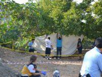 Bozyazı'da Ahmet Toprak, kendini ceviz ağacına astı