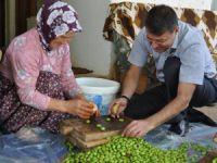 Silifke Belediye Başkanı Mustafa Turgut, ziyaret ettiği evlerde zeytin kırdı