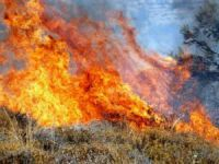 Silifke'de orman yangını: 2 hektar kızılçam ormanı yandı