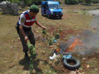 Mersin İl Jandarma Komutanlığı, 2015 yılı verilerini açıkladı