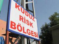Tarsus'ta kuduz alarmı!