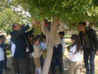 Akdeniz İlkokulu ağaçlara astığı kuş kafesleriyle örnek davranış sergilediler