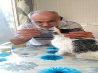 Sokak Hayvanını Elleri İle Besledi!